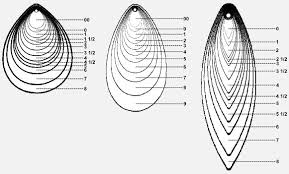 Spinner Chart Walleye Spinner Blade Size Chart Best Picture Of Chart