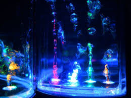 Images For > Cool Lighting Effects For Your Room | lights for your room |  Pinterest | Room and Lights
