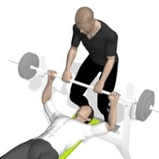 Changes In Onerepetitionmaximum 1RM Bench Press Bench 1rm Bench