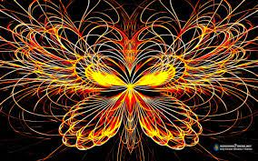 butterfly, Effect, Colors Wallpapers HD ...
