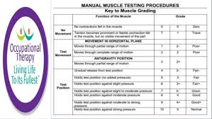 Mmt Grades Occupational Therapy Manual Muscle Testing And Grading