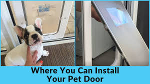 as pet owners we find this convenient like any construction at home there are things to consider where do i want my pet door installed