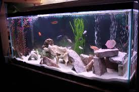 fascinating fish tank decoration ideas 19 diy decorations aquarium furniture