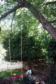 Tree Swings 76 Best Love Tree Swings Images On Pinterest