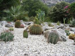 Small Picture What Is A Gravel Garden Ideas For A Landscape Gravel Garden