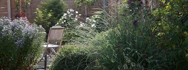 Garden Design Norfolk New Ideas