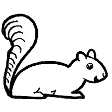 Small Picture How to Draw Cartoon Squirrels with Simple Step by Step Drawing