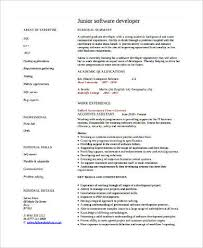 Junior Software Developer Resume in PDF