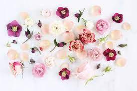 Aesthetic Flowers Desktop Wallpapers ...