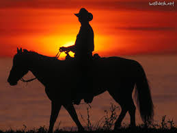 Image result for cowboy