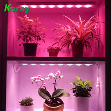 Growing Orchids Under Led Lights Grow Better And Beautiful Orchids Full Spectrum Waterproof Plant Led Grow Light Bar Buy Plant Led Grow Light Bar Waterproof Led Grow Light Bar Led