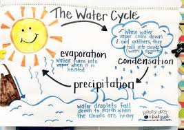The Water Cycle Anchor Chart Evaporation Condensation And