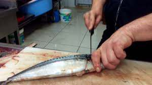 Uskumru Balığı Nasıl Temizlenir? How to Fillet Scomber/Mackerel? - макрель  - YouTube