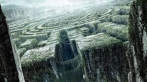 Resultado de imagen para maze runner