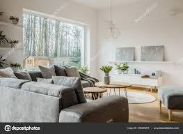 Graues Bild Auf Einem Regal Modernen Wohnzimmer Interieur Mit Ecke
