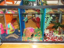 diy mesh aquarium dividers