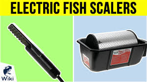 Top 5 <b>Electric Fish Scalers</b> of 2019 | Video Review
