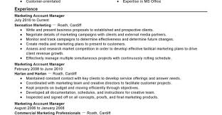 Creative Director Resume Sample Mind Mapping In Teaching English