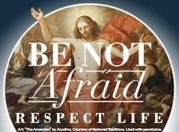 respect life program printable catalog