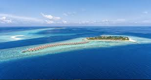 Resultado de imagem para IMAGENS RECEITAS DE COMIDAS DE MALDIVAS