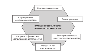 Финансовая политика организации Принцип самоуправления или хозяйственной самостоятельности заключается в самостоятельном определении перспектив развития организации в первую очередь на