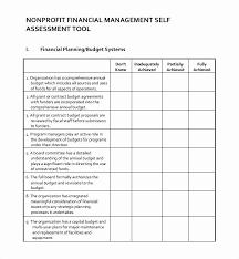 Nonprofit Business Plan Template 30 Nonprofit Business Plan Template Pdf Hamiltonplastering