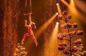 Cirque Du Soleil Luzia Grand Chapiteau At The Orange