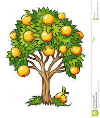 fruit tree clipart. Brilliant Fruit Fruit Tree Clipart Isolated 25915852 Jpg On Y