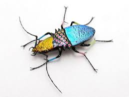 glass sculptor Wesley Fleming | Sculptor, Insect jewelry, Bugs and insects