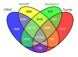 R Venn Diagram Ggplot2 Venn Diagrams A Visualization Nightmare Irics Bioinformatics