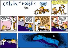 Calvin And Hobbes Dream Quote