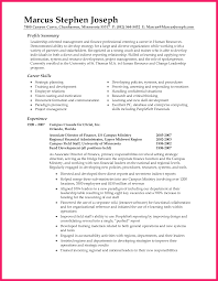 Summary Examples For Resume Bio Letter Format