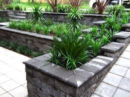 Small Picture Brilliant Australian Front Yard Garden Ideas Mesmerizing