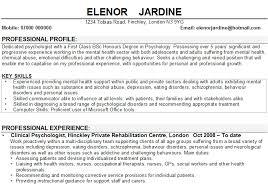 profile sample for resume   laredo roses Professional CV Writing Services