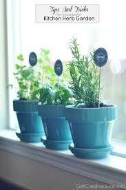 Superb Vertical Herb Box Phenomenal Herb Gardens in Indoor ...