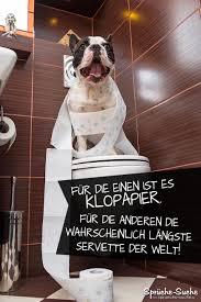 Hunde Sprüche Suche