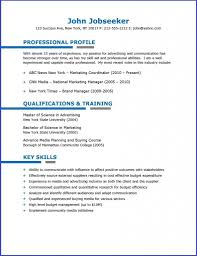 Buy Resume Templates Blue 24 Resume Template Resume Downloads Creative Resume Design 14