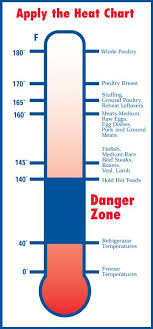 Fda Internal Meat Temperature Chart Need To Print This Out