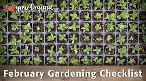 february gardening checklist 10 tips to help get your organic garden ready for spring home made art