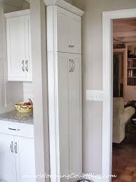 slim kitchen cabinet stylist inspiration 14 best 25 cabinet