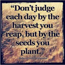 Pay It Forward Quotes Inspiration Pay It Forward Planting Seeds Of Kindness Chase Made A