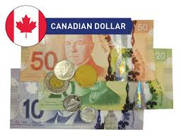 Currency Exchange Check Cashing Fees Chart Kingston Check Cashing And Foreign Currency Exchange