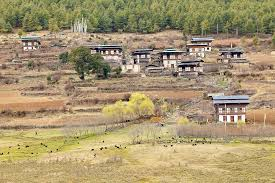 Country Vacation Bhutan Scenic Tour