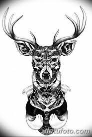эскиз тату олень 23022019 057 Sketch Tattoo Deer Tatufotocom