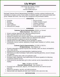 customer service representative resumes marvelous summary resume examples customer service you have