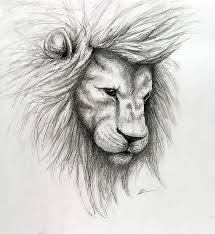 easy lion drawings in pencil. Plain Drawings Easy Lion Drawing In Pencil  Photo1 In Lion Drawings Pencil
