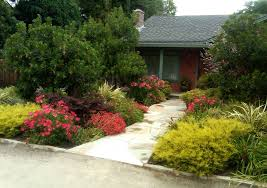 Small Picture Image Of Front Yard Landscaping Ideas Photos Small No Grass Home