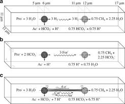 Modelling extracellular limitations for mediated versus direct ...