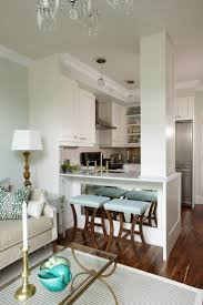 Houzz Interior Design Ideas Condo Small Space  Best .