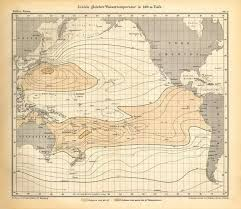 Ocean Depth Chart A1 84x59cm Poster Of Lines Of Equal Water Temperature In 400 Meters Depth Chart Pacific Ocean German Antique Victorian Engraving 1896